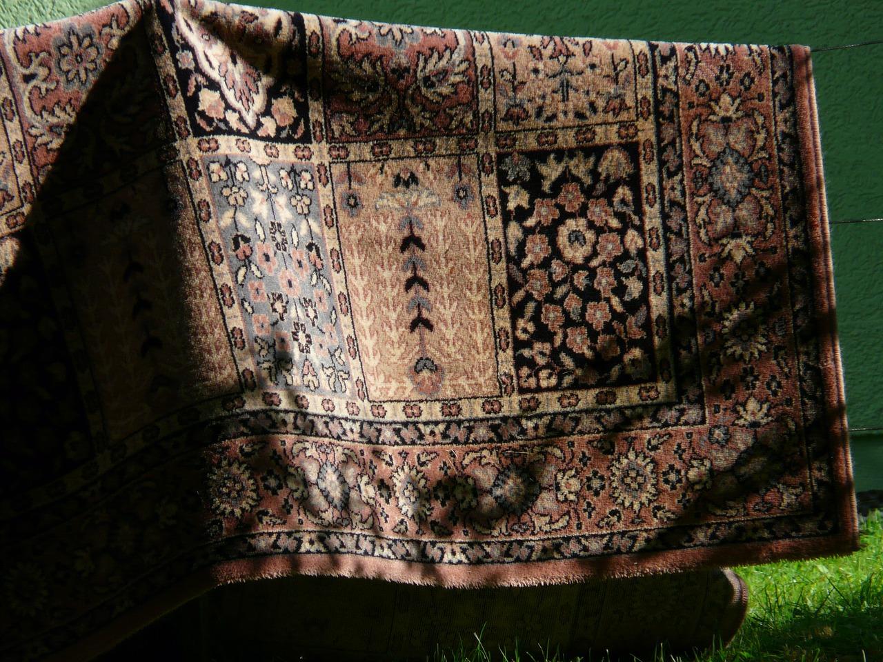 secar alfombra tejidos