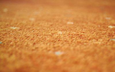 ¿Se puede tener alfombra si tenemos alguna alergia?